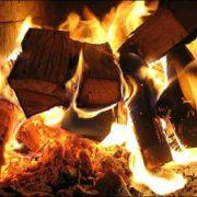 Wood-Burning-Ottawa-Impressive-Climate-Control