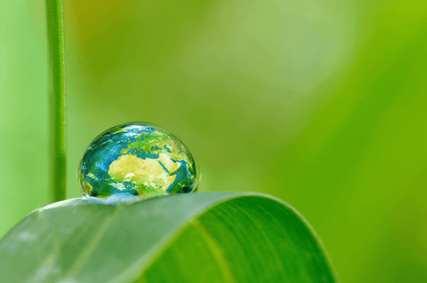 Le recyclage du papier et ses apports environnementaux