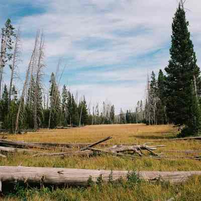 YELLOWSTONE BACKCOUNTRY