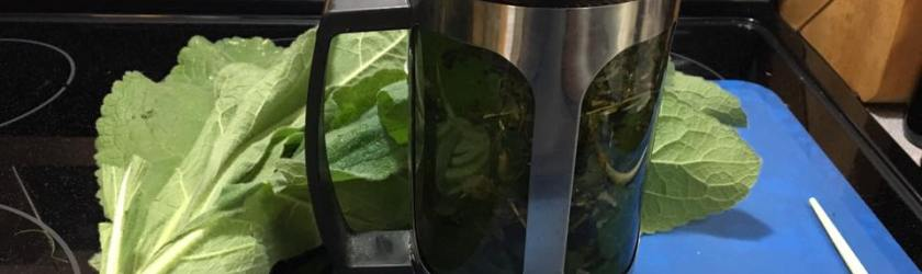 As Wildfire Smoke Hangs Heavily About, I Created An Herbal Infusion So That I Can Breathe