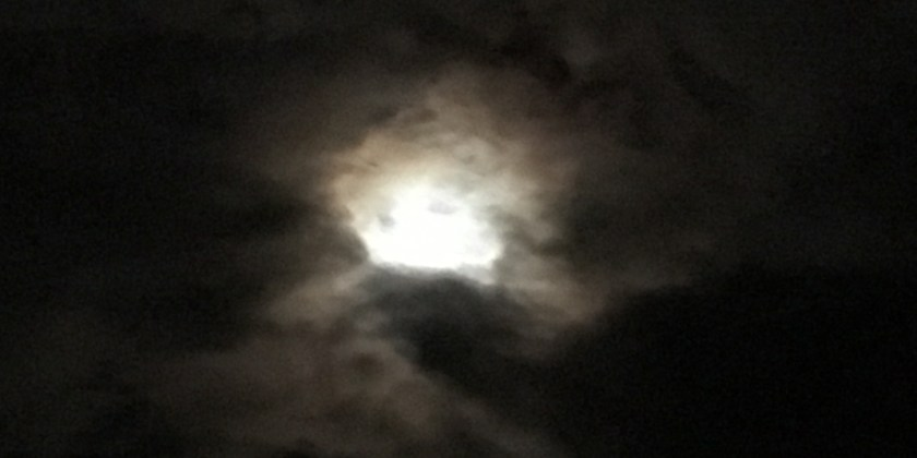 Taurus Moon ~ 24-26 July 2019 - Stepping Aside