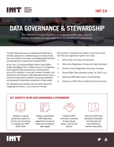 thumbnail of IMT-governance-stewardship