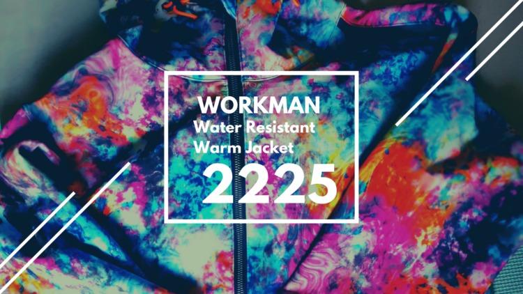 ワークマン 耐久撥水ウォームジャケット 2225 レビュー|動きに重視したアウトドア・タウンユース兼用おしゃれアウター