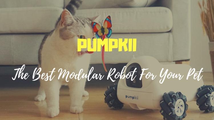 PUMPKII ペットに最適なモジュラーロボット|リモート操作で給餌・掃除・声掛けなどをオートメーション化