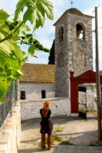 grapes & church