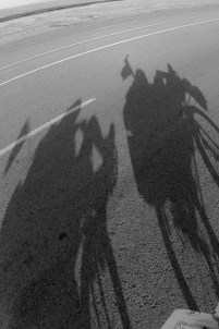 shadow is always following us