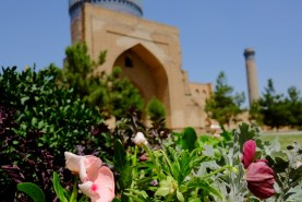 Flowers & Mosque