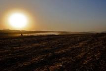 Shepherd at Sunrise