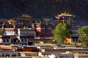 Gold-Roofed Temples