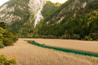 Reed Grass Lake