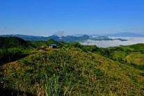 Panorama Hut