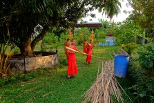 Monks in Action