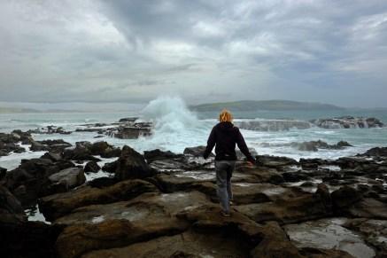 Wind-tossed Headland