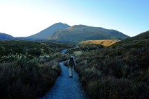 Alpine Crossing Trailhead
