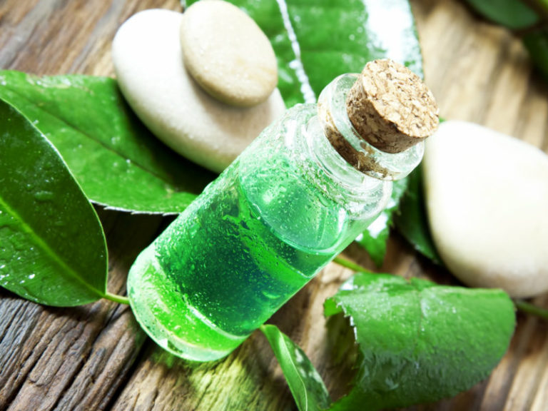 Tea tree oil Do you have oily skin you need face oil