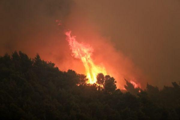 Σχίνος: Καταστροφές σε σπίτια - Στάχτη πάνω απο 40.000 στρέμματα δάσους