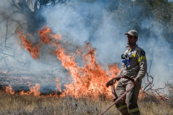 , Φωτιά στην Κερατέα (4 Βίντεο) – Οι φλόγες απειλούν πάλι σπίτια – Ανησυχία για τον Εθνικό Δρυμό Σουνίου, INDEPENDENTNEWS