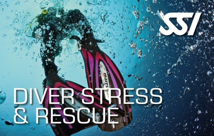 Diver Stress & Rescue and specialty SSI
