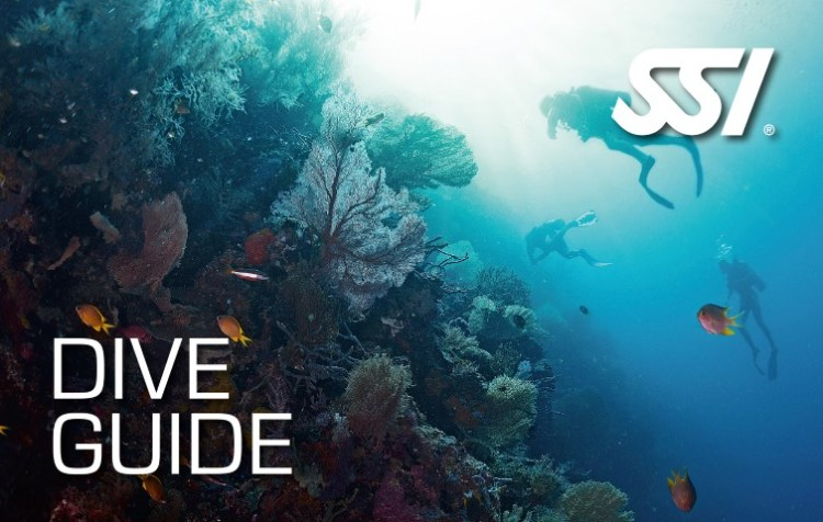 Dive Guide SSI specialty