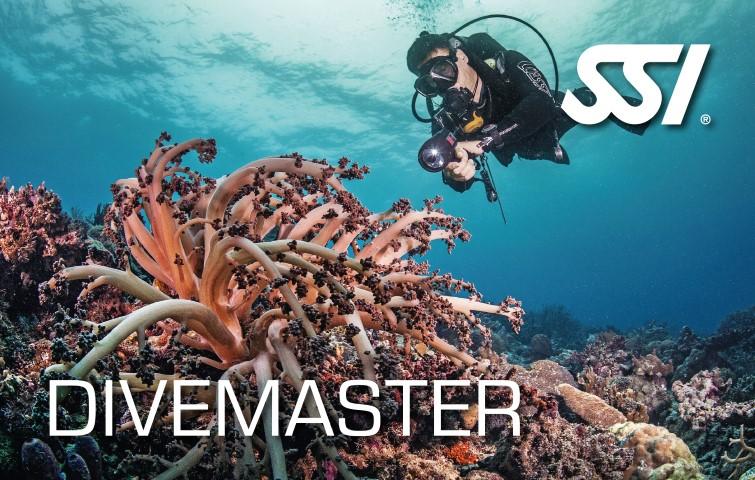 SSI Dive Master brevet
