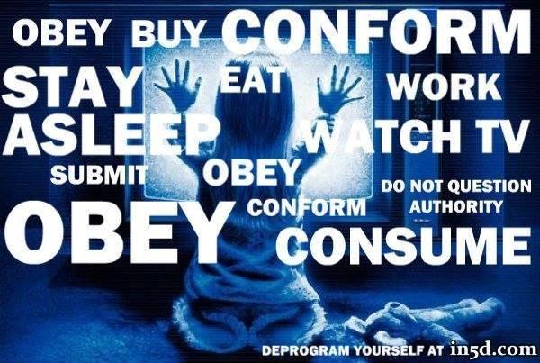 4. STOP WATCHING (STATE SPONSORED PROPAGANDA) TELEVISION!!!
