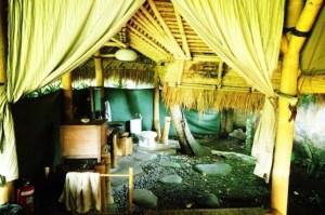 IMG_zissou-bathroom
