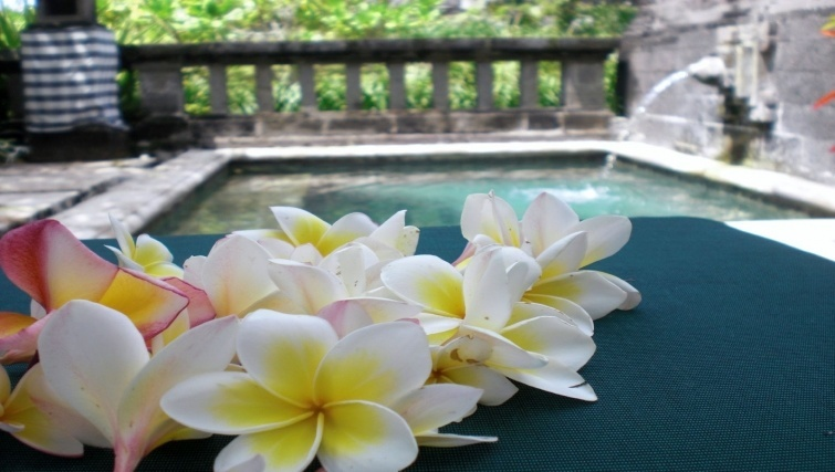 Top reasons to move to Bali: lifestyle and staff