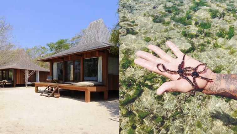 The Beach villas and beach critters in West Bali