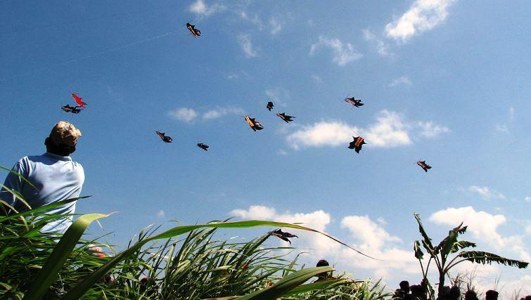 Bali Kite Festival. Photo by Rarioj