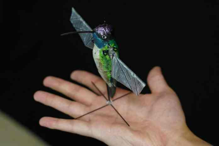 Purdue University researchers are building robotic hummingbirds that learn from computer simulations how to fly like a real hummingbird does. The robot is encased in a decorative shell. (Purdue University photo/Jared Pike)