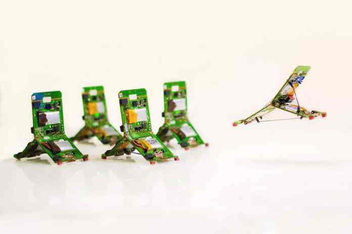 Robot-ants that can jump, communicate and work together./Image: EPFL