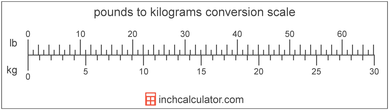 Convert Pounds To Kilograms