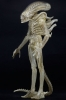 Neca Alien 1979 1/4 Transculent Prototype Suit Concept