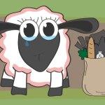 Einkaufen Schaf