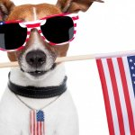 The Psychology Behind Why We Love the 4th of July (And How It Can Help Your Business)
