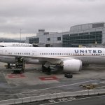 United Airlines and the Dead Dog. The Airline Offers an Explanation (and a Bizarre Suggestion)