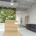 These Companies Are Putting Mother Nature to Work with Biophilic Design