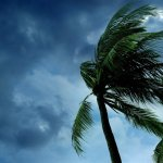 This Airline's Response to Hurricane Irma Is a Masterclass in Compassionate Pricing