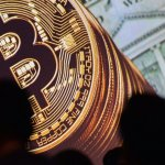 Why We're All Ignoring the Experts Who Are Trying to Warn Us About Bitcoin