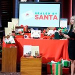 How These Holiday-Themed Shark Tank Businesses Stay Alive Year-Round