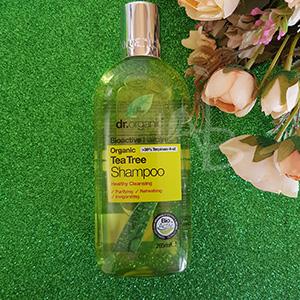 Shampoo per cute grassa Dr. Organic