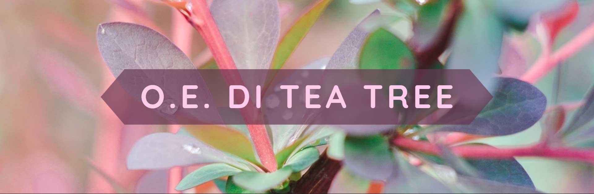 Copertina olio essenziale di tea tree