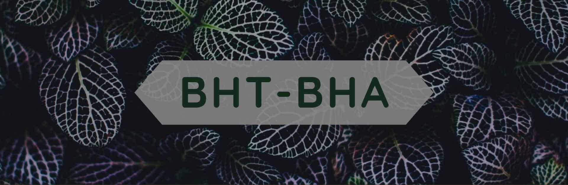 Copertina bht-bha