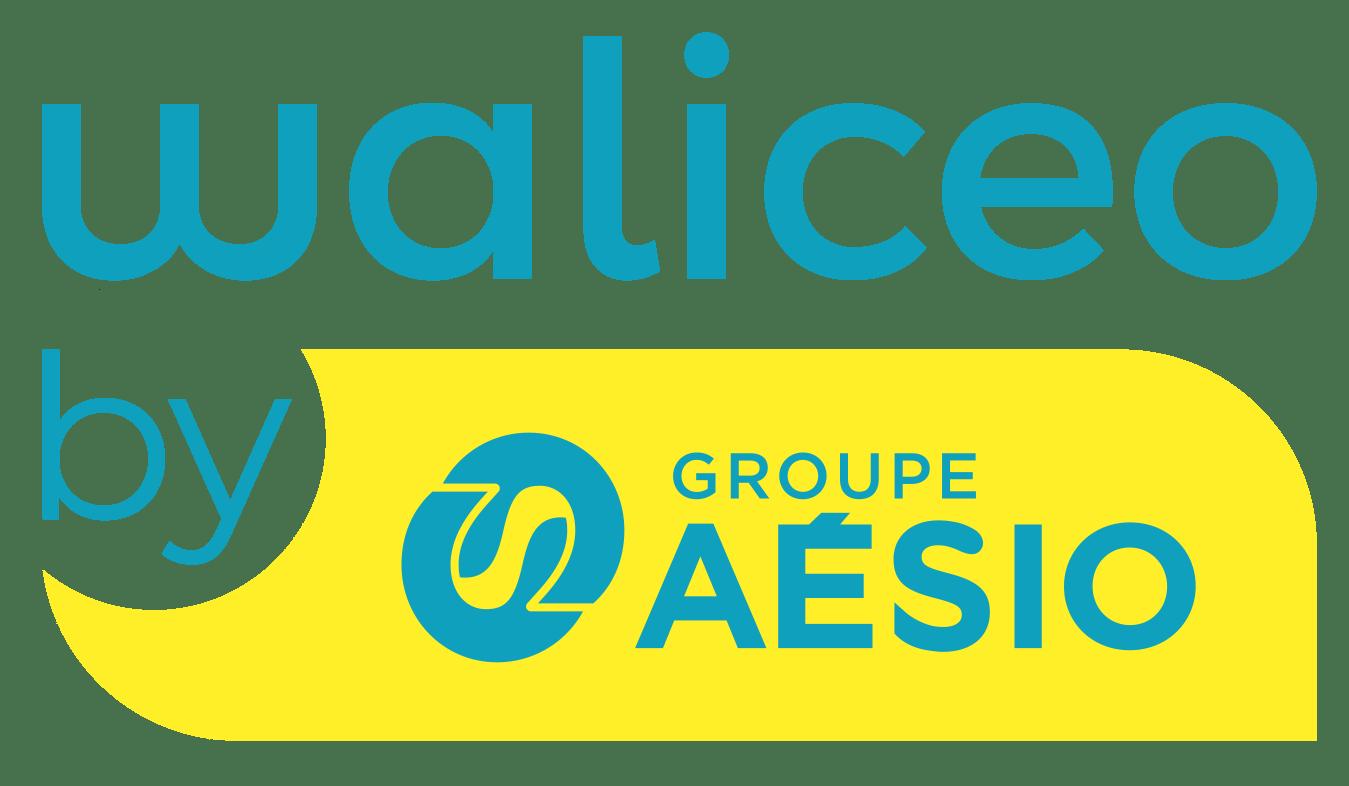 19_070_3_logo waliceo by aesio-quadri_1coul