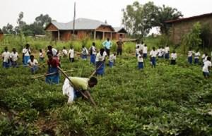 Alunni al lavoro nell'orto di una scuola-impresa