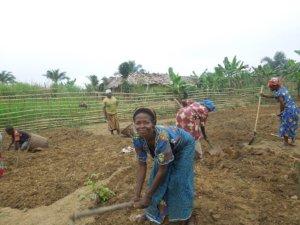 Il riscatto delle donne di Shabunda web