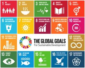 Obiettivi dell'Agenda 2030