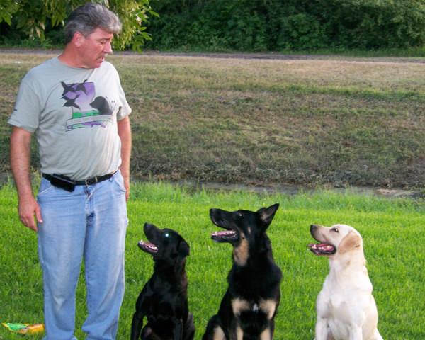 Dog Training New Orleans