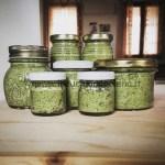 Ricette Pesto di zucchine