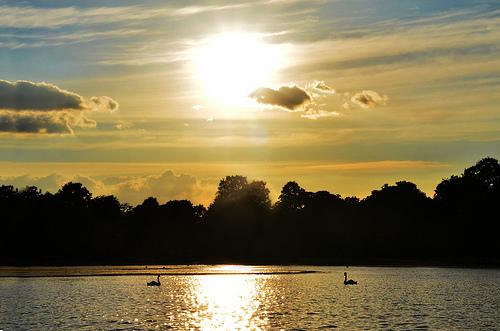 Por-do-sol em Kensigton Gardens, um dos Parques de Londres